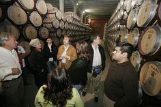 Reconocimiento de la Ruta del Vino Ribera del Duero en los Premios La Posada   SoyRural.es