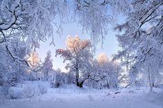 зимние фото-3-11