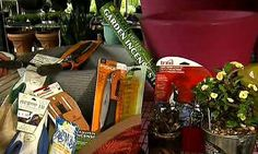 Garden expert Mark Gibbs shares some gift ideas you can get for dad that will help him when he's spending time outdoors. http://www.myfoxaustin.com/clip/11610601/yg