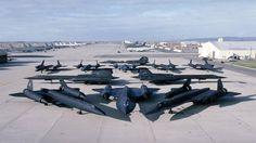 1 Blackbird, 2 Blackbirds, 3 Blackbirds... more