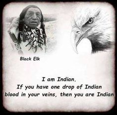 One drop of native blood in your veins, then yes, you are apart of our tribes
