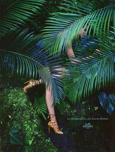 Hermès S/S'14 campaign | photography: Hans Silvester