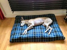 KosiPet Cheap Budget Blue Check Fleece Small Spare Cover For Dog Bed,Pet Bed ^^ Awesome dog product. Click the image : Pet dog bedding