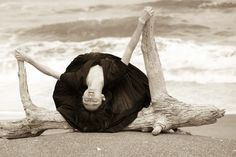 舞台はフランス風サロン篠山紀信世にも エレガント な写真展(Mayumi Nakamura)