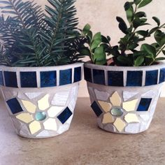 Just a few more little guys added! All planters are ready to ship. A perfect gift for the plant lover in your life.