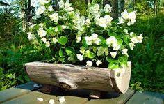 Resultado de imagen para jardines pequenos con troncos