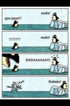 "Memes en Español / ¡Nada!  1. ¿Por qué está confundido el pinguino en el agua?    2. ¿Qué pasó al pinguino confundido?     3. Research: ""Boludo"" (fool) es una palabra común PERO solamente en un país.  ¿En qué país es una palabra popular?    Note: ¡Ten cuidado! For some people, ""boludo"" is a stronger, more offensive insult so be careful with whom you use it!"