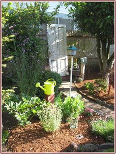 Uncanny How To Landscape Your Yard On A Budget