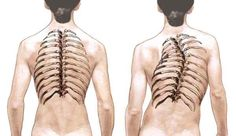 Fantastic+Exercises+To Give+You+A Healthy+Spine
