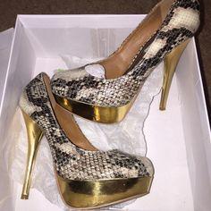 Steve Madden heel, snake skin, gold heel Steve Madden heel, snake skin, gold heel. Worn once Steve Madden Shoes Heels