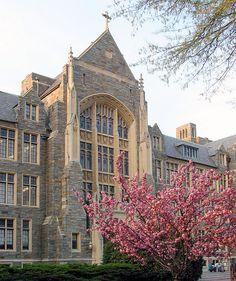 Georgetown University lograr irme en el verano e excelencia!!
