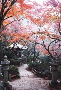 Burning leaves at Mitaki Temple, Hiroshima, Japan Places Around The World, Oh The Places You'll Go, Around The Worlds, Beautiful World, Beautiful Places, Beautiful Pictures, Destination Voyage, Okinawa, Belle Photo