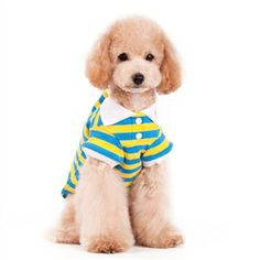 Stripe Polo shirt, pet clothes ,pet ,dog ,pet clothing