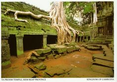 """Ta Prohm Temple"" to Taiwan on 8/18/2016    Traveling Time : 2 Days          Mailbox : 汐止樟樹灣郵局"