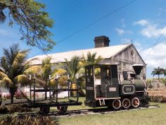 Old train at Sugar mill in #Mauritius