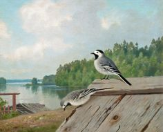 wright, ferdinand von - Small Birds on the Roof Small Birds, Pet Birds, Ferdinand, Archipelago, Food Pictures, Finland, Mythology, Fine Art, History