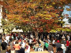 11 Can't Miss Fall Food and Drink Events, Atlanta