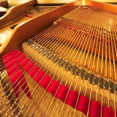 Boa tarde! Pianos de cauda e verticais, encontra no Salão Musical de Lisboa! Venha experimentar! www.salaomusical.com
