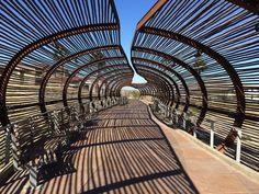 Bamboo and Steel bridge Corona, CA