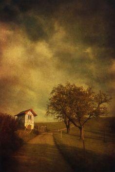 'Häuschen am Weinberg' von Priska  Wettstein