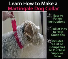 DIY martingale dog collar