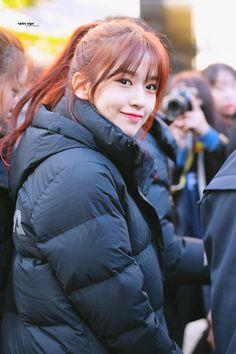 an yujin pics ( Kpop Girl Groups, Korean Girl Groups, Kpop Girls, Fandom, Yuri, Survival, Japanese Girl Group, Kim Min, Extended Play