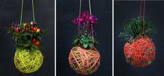 Elabora Tu Propia Kokedama y Presume de Jardín Moderno   Ideas Decoradores