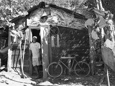 Willie? House| Experience Jamaique