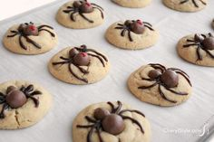 This recipe for Halloween spider cookies couldn't be easier to create! You don't need anything fancy. recipes for halloween Biscuits Halloween, Halloween Baking, Halloween Dinner, Halloween Goodies, Halloween Food For Party, Halloween Desserts, Halloween Cupcakes, Halloween Spider, Halloween Candy