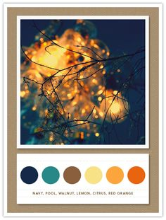 Color Card 061: Navy, Pool, Walnut, Lemon, Citrus, Red Orange | The Inspired Bride