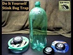 Sensible Prepper Presents: Cheap DIY Stink Bug Trap.Halyomorpha Halys (aka Stink Bugs) can be real pest and killing them cause a terrible odor. This is a Che...