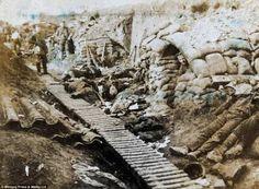 Fotografia dell'archivio Smethurst, prima guerra mondiale