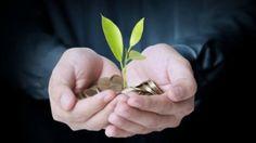 Economia ecologica: la valoracion de sistemas socio-ecologicos en el contexto del cambio climatico