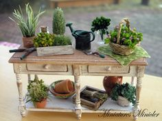 Miniature Dollhouse Spring Transplanting Workshop ... LOVE THIS!