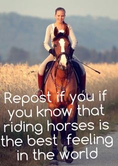 Repost if you know that know horses is the best feeling in the world.