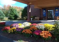 Comfort Inn, Ellsworth, Maine Ellsworth Maine, Plants, Plant, Planting, Planets