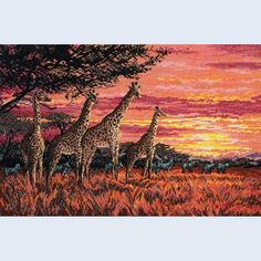 Savannah Sundown - counted cross stitch kit Maia
