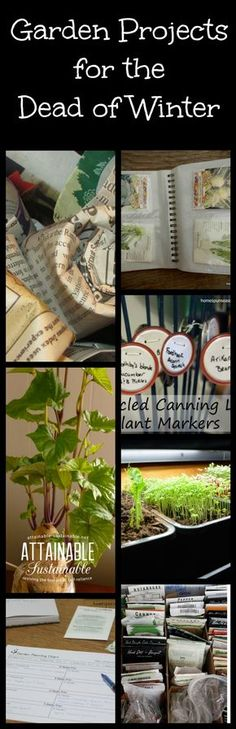 Garden ideas and projects to tackle in the dead of winter. Plan for the garden. Grow things. Build things.