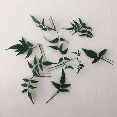 쟈스민 잎으로 헤어핀을 만들어 드렸더니, 이렇게 예쁘게 꽂으신 단아한👰🏻신부님    #오블리크플라워디자인 #obliqueflower