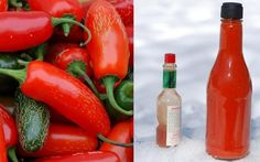 Make your own hot sauce! I have so many peppers growing, I'm totally doing this :)