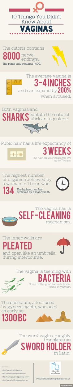Things You Didn't Know About The Vagina. Interesting facts about vaginas. Vagina Facts: 10 Things You Didn't Know About Vaginas (Infographic). The More You Know, Good To Know, Vagina, Pure Romance, Things To Know, Just In Case, Fun Facts, Weird Facts, Crazy Facts