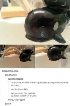 It serves a good porpoise