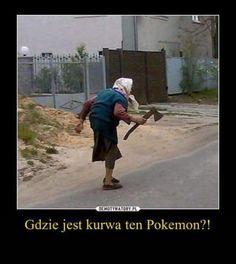 Wtf Funny, Funny Memes, Polish Memes, Tough Woman, Nyan Cat, Why So Serious, Chuck Norris, Geek Culture, Best Memes