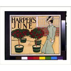 Historic Plant Print. Harper's June. snapshotsofthepast.com.