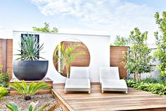 Modern deck with outdoor accent wall