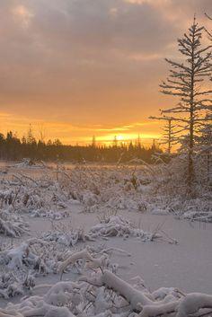 Winter Landscape, Landscape Photos, Outdoor Adventure Store, Banff Centre, Algonquin Park, Book Festival, Two Rivers, Photo Contest