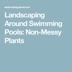 Good Landscaping Around Swimming Pools: Non Messy Plants