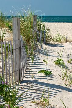 beach fence leading onto the beach in south yarmouth massachusetts photograph.