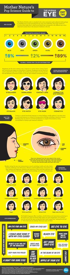 The pop science guide to the human eye (part 2).