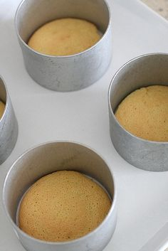 cake bases